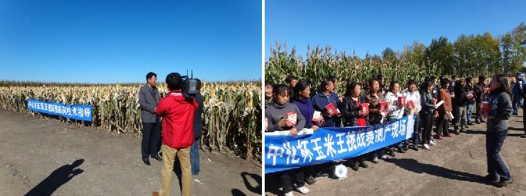 2013年9月25日,黑龙江分公司与安达市薄荷台乡政府联合开展了中化杯